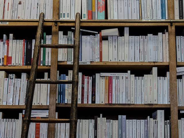 https://pixabay.com/en/bookshop-library-books-ladder-1759619/