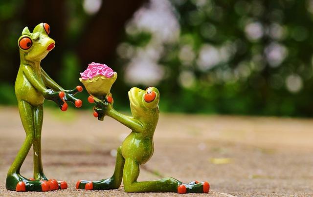 https://pixabay.com/en/i-beg-your-pardon-marriage-proposal-927746/